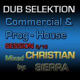 Dub Selektion - Commercial & Prog-House Session 3-2012