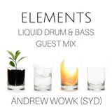 Elements - A Liquid Drum & Bass Podcast Ep 27: Guest Mix - Andrew Wowk (SYD)
