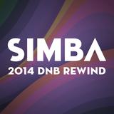 Simba - 2014 DNB REWIND