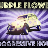 Purple Flower Progressive Hour with Ray Wilson interview!