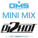 DMS MINI MIX WEEK #231 DJ 2HOT