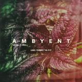 AMBYENT (SANYASI b2b VELEZ) Live CDMX 15.7.17