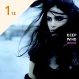 Deep Wind