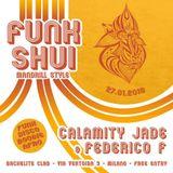 Funk Shui - Tropical Disco Mix