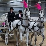 "Chrissy B Show:  Special ""princess carriage ride"" at White Horse Farm"