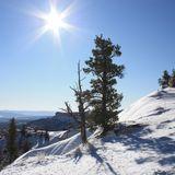 Sunny February