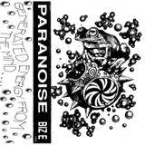 Paranoise - Biz E Side B 1993