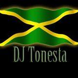 Some Lovin Reggae. Mix by DJ Tonesta