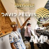 David Pelvis LIVE at The Amphitheatre - Shambhala 2018