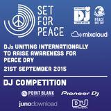 Set for Peace 2015 (DJ Sammy Venken)