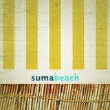 manuell @ Suma Beach (Istanbul) - July 2013