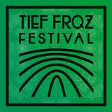 Tief Frequenz Festival 2016 // Podcast by Einzman (Chrome! Dub, Darmstadt)