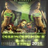 BASHMENT MIX 2014/2015 BY(DJ @TICKZZYY)