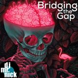 Bridging the Gap ~ September 19th, 2018: New Additions of Old Stuff