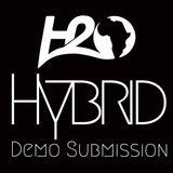 H2O Africa 2014 Demo - Hybrid