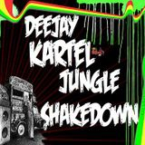JUNGLE SHAKEDOWNMIX