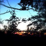 Sun Sets On Summer