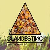 Clandestino 017 - Chris Duckenfield