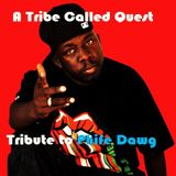 A Tribe Called Quest - Tribute to Phife Dawg
