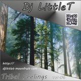 Tribal Feelings Vol.06 by LittleT