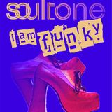 Soultone - i am funky mix #02