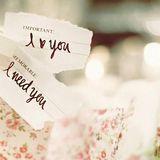 Valentine ngày tình yêu trở lại