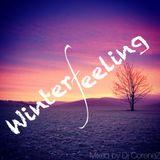 Winterfeeling - Dj CoreneZ (Set 08.11.2013)