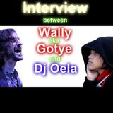 Interview between Wally_aka_Gotye and djOela