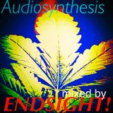 Audiosynthesis mixed by ENDSIGHT!