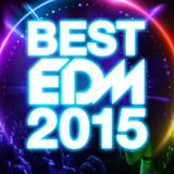 THE BEST EDM 2015