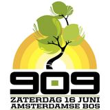 909 Festival - 02 - Josh Wink (Ovum Records) @ Amsterdamse Bos - Amstelveen (16.06.2012)