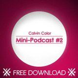 Calvin Color Mini-Podcast #2