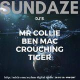 SUNDAZE Crouching Tiger
