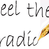 Feel the radio (Passion of the Beat 05)