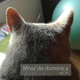 Mixu' de Duminica vol.25