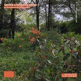 Smoke & Mirrors w/ DJ Autumn (Banoffee Pies): 2nd July '19