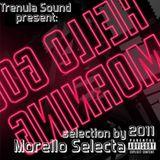 HELLO GOOD MORNING MIX TAPE 2011 MORELLO SELECTA (TRENULA SOUND)
