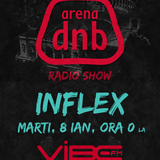 Arena dnb radio show - Vibe fm - mixed by INFLEX - 08.01.2013