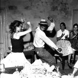 Zingaro! - The Rhumba Craze