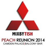Mixed By Tish Peach Balcony Mini Mix
