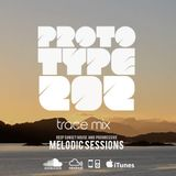 Trace Mix - the Melodic Sessions