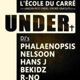 Phalaënopsis @ UNDER / Luik