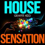 Graffiti Kidd's House Sensation