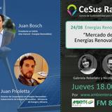 Mercado de Energías Renovables, Plan Renovar 2.0 y Resolución MATER