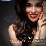 DJ BIGICE - Your Skin Seduce Me (DJ MIXTAPE)
