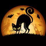 Halloween teaser xx