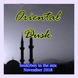 Oriental Dusk-Deep techno with oriental taste