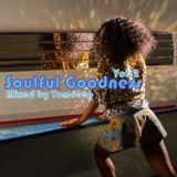 Soulful Goodness Vol.2   ( Soul & Funky House )  2017
