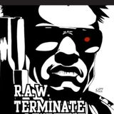 R.A.W. - Terminate (side.a) 1996
