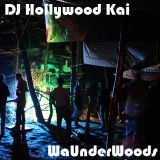 DJ Hollywood Kai @ We Are Underground We Are In The Woods 13.09.2014